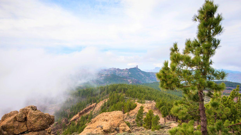 Cuatro lugares bonitos que visitar en Gran Canaria